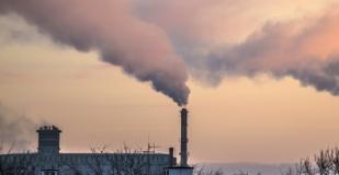 El impacto de los TLC en el medioambiente.