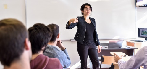 Cuerpo docente de Contador Público